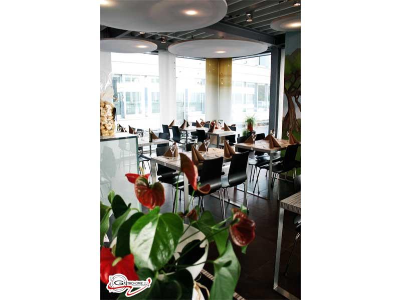 Gioia in tavola windhof gastronomie restaurant bar - La cuisine rapide luxembourg ...